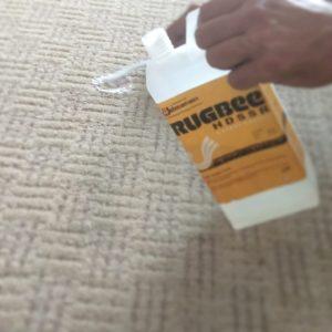 cuci karpet